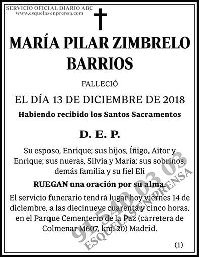 María Pilar Zimbrelo Barrios